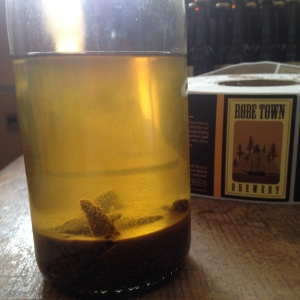 Ambergris tincture Moby Dick Ambergris Ale Robe Town Brewery